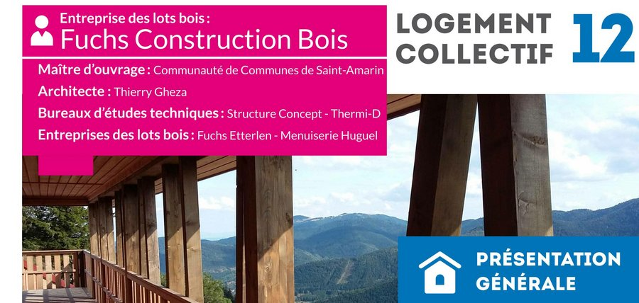 Construction Bois Alsace : For?t-Bois alsacienne (FIBOIS Alsace) – Candidats et r?sultats 2016