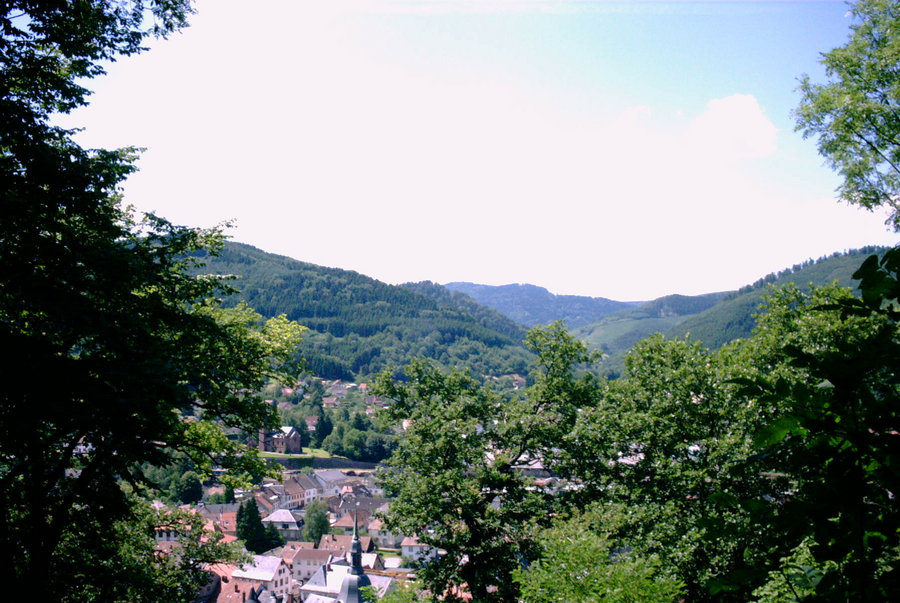 Village_Fibois.jpg